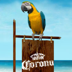 Corona Beer Summerbration Site Sound Design